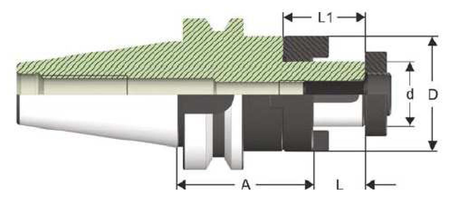 BT50 - Kombi-Aufsteckdorne - MAS 403 BT